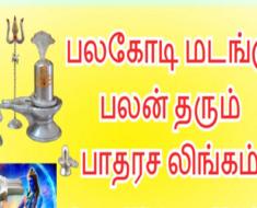 பலகோடி மடங்கு பலன் தரும் பாதரச லிங்கம் - Padarasa Lingam