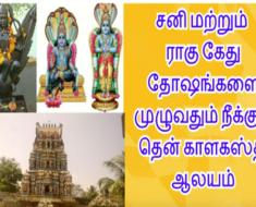 சனி மற்றும் ராகு கேது தோஷங்களை முழுவதும் நீக்கும் தென் காளகஸ்தி ஆலயம் -Sri Kalatheeswarar Temple