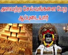 அளவற்ற செல்வங்களை பெற ஆப்புடையார் - Thiru Aappudayar Temple in Sellur - Madurai
