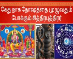 கேது நாக தோஷத்தை முழுவதும் போக்கும் சித்திரபுத்திரர்
