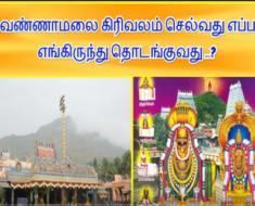 திருவண்ணாமலை கிரிவலம் எப்படி செல்வது? எங்கிருந்து தொடங்குவது? Girivalam in Tiruvannamalai