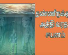 தண்ணீருக்குள் அத்தி வரதர் சயனம் - Athivaradar