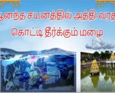 ஆனந்த சயனத்தில் அத்தி வரதர் - கொட்டி தீர்க்கும் மழை