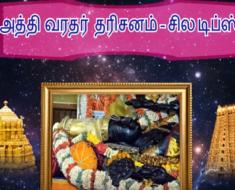 அத்தி வரதர் தரிசனம் - சில டிப்ஸ்