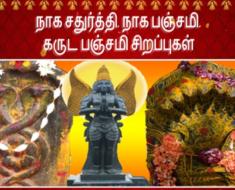 நாக சதுர்த்தி, நாக பஞ்சமி, கருட பஞ்சமி சிறப்புகள் - Naga chaturthi Naga Panchami Garuda Panchami