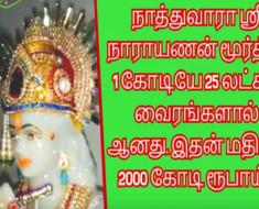நாத்துவாரா ஸ்ரீ நாராயணன் மூர்த்தி 1 கோடியே 25 லட்சம் வைரங்களால் ஆனது இதன் மதிப்பு 2000 கோடி ரூபாய்