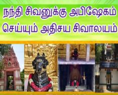 நந்தி சிவனுக்கு அபிஷேகம் செய்யும் அதிசய சிவாலயம் - Sri Dakshinamukha Nandi Tirtha, Bengaluru