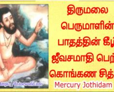 திருமலை பெருமாளின் பாதத்தின் கீழ் ஜீவசமாதி பெற்ற கொங்கண சித்தர் - Kongana Siddhar