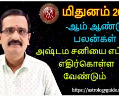 மிதுனம் 2021 புத்தாண்டு பலன்கள் - அஷ்டம சனியை எப்படி எதிர்கொள்ளவேண்டும் - Gemini 2021