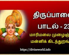 திருப்பாவை பாடல் 23 மாரிமலை முழைஞ்சில் மன்னிக் கிடந்துறங்கும் Tiruppavvai Padal 23 Maari malai muzha